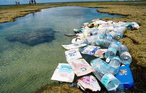 Voluntários podem se inscrever para dia mundial de limpeza de rios e praias em Niterói