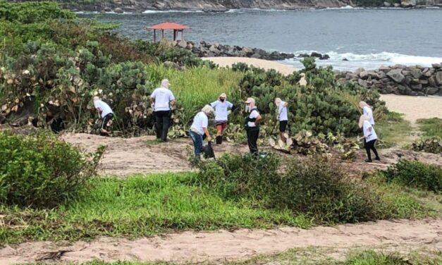 Restingas de Niterói começam a ser reflorestadas pela Secretaria de Meio Ambiente, Recursos Hídricos e Sustentabilidade