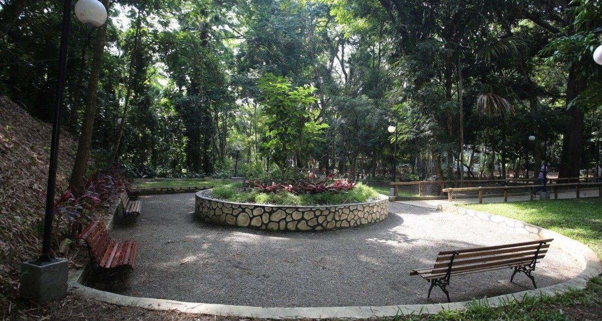 Horto do Fonseca inaugura área de piquenique